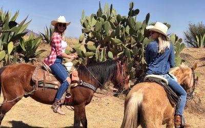 Flugbegleiter Blog Erfahrung Mexico